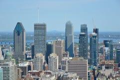 Горизонт Монреаля в лете Стоковое Изображение