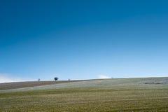горизонт просто Стоковое Фото