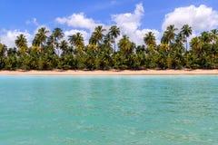 Горизонт пляжа Maragogi на Alagoas, Бразилии Стоковые Изображения RF