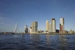 Горизонт Роттердама с мостом Erasmus Роттердам стоковые изображения rf