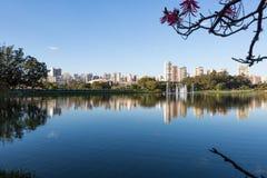 Горизонт Сан-Паулу Стоковое фото RF
