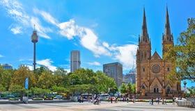 Горизонт Сиднея с башней Сиднея и собор St Mary в Сиднее Стоковое Фото