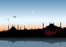 Горизонт Стамбула иллюстрация штока