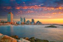 Горизонт Тель-Авив стоковые изображения rf