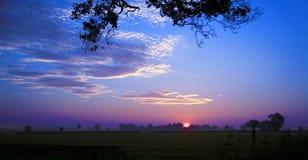 горизонт утра Стоковые Фото