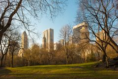 Горизонт центра города Манхаттана от Central Park в Нью-Йорке Стоковая Фотография RF