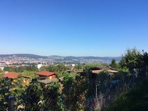 Горизонт Цюриха с районом сада Стоковая Фотография RF