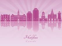 Горизонт Halifax V2 в фиолетовой излучающей орхидее Стоковые Фото