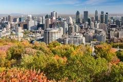 горизонт montreal осени Стоковое Изображение