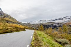Гористая местность Норвегии стоковое изображение rf