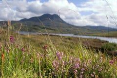 гористые местности шотландские стоковое фото