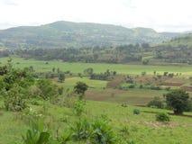 Гористые местности Boko Стоковое Изображение RF