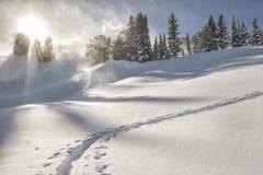 Гористый след лыжи на ветреный день в Tetons Стоковая Фотография RF