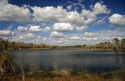 горит озеро Стоковое Изображение RF