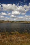 горит озеро Стоковые Фотографии RF