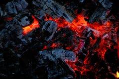 горит пожар угля деревянным стоковое изображение rf