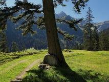 Горная вершина в горах Raetikon Стоковая Фотография