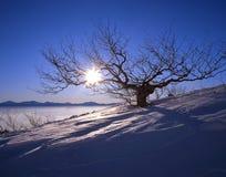 горная вершина утра Стоковое Изображение
