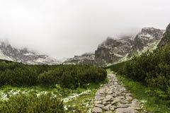 Горная тропа в долине Gasienicowa в июне Горы Tatra P Стоковое Фото