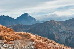 Горная цепь в западных горах Tatra Стоковое Фото