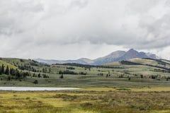 Горная цепь Gallatin, национальный парк Йеллоустона стоковое фото rf