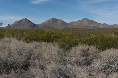 Горная цепь Tres Hermanas в юго-западной щетке Неш-Мексико и пустыни Стоковое Изображение