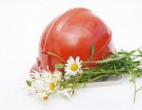 горнорабочая s шлема camomiles Стоковая Фотография