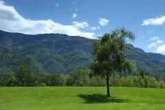 Горные вершины весны Стоковое Изображение RF