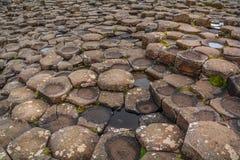 Горные породы на гигантской мощёной дорожке ` s, графстве антриме, Северной Ирландии стоковые изображения rf