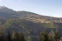 горные склоны пущи Стоковая Фотография