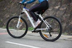 Горный велосипед велосипедиста женщин задействуя на следе леса Стоковая Фотография RF