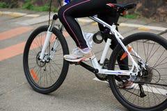 Горный велосипед велосипедиста женщин задействуя на следе леса Стоковое фото RF