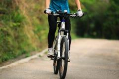Горный велосипед велосипедиста женщин задействуя на следе леса Стоковое Изображение RF