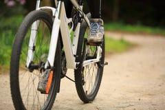 Горный велосипед велосипедиста женщин задействуя на следе леса Стоковые Изображения
