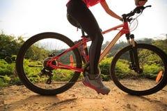 Горный велосипед катания велосипедиста женщины на следе леса Стоковая Фотография