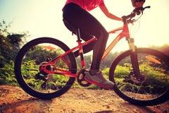 Горный велосипед катания велосипедиста женщины на следе леса Стоковые Фото