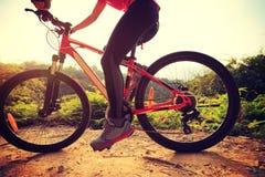 Горный велосипед катания велосипедиста женщины на следе леса Стоковое фото RF