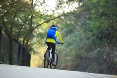 Горный велосипед катания велосипедиста женщины на следе леса Стоковое Фото
