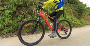 Горный велосипед катания велосипедиста на следе леса Стоковое Изображение