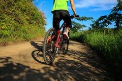 Горный велосипед катания велосипедиста на следе леса Стоковые Изображения RF