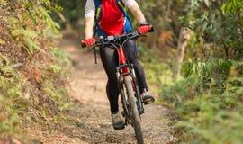 Горный велосипед катания женщины на внешнем следе в лесе Стоковая Фотография RF