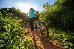 Горный велосипед нося велосипедиста взбираясь на следе леса лета Стоковая Фотография