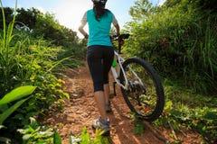 Горный велосипед нося велосипедиста взбираясь на следе леса лета Стоковые Фотографии RF