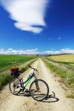 Горный велосипед на следе рельса Otago центральном, Новая Зеландия Стоковые Фотографии RF