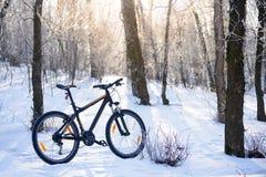 Горный велосипед на следе Snowy в красивом Lit леса зимы к Солнце Стоковая Фотография RF