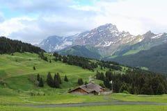Горный вид в Швейцарии Стоковые Изображения