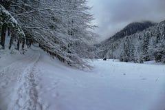 Горный вид зимы с путем и зданием стоковое изображение