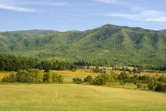 горный вид поля стоковое изображение