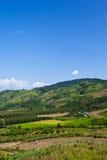 горный вид Стоковая Фотография RF
