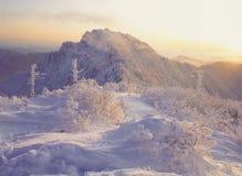 горный вид Стоковые Фотографии RF
